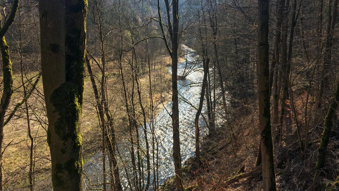 Das Zschopautal im Erzgebirge bei Thermalbad-Wiesenbad. Foto: Chris Bergau