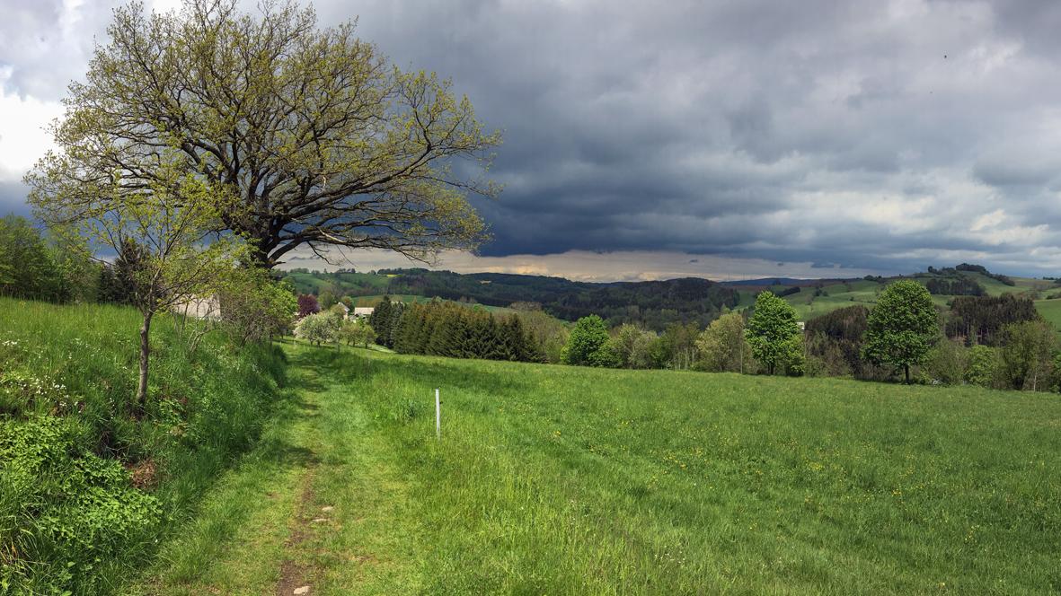 Auf dem Hagebuttenweg zwischen Königswalde und Geyersdorf. Foto: Chris Bergau/bergau-media.com